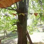 Strom jako součást přírodního domu