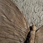 Motýl z hlíny